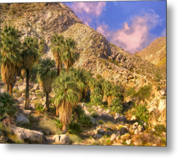 Palm Oasis In Late Afternoon Metal Print
