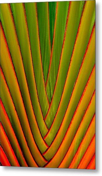 Palm Weave Fine Metal Print
