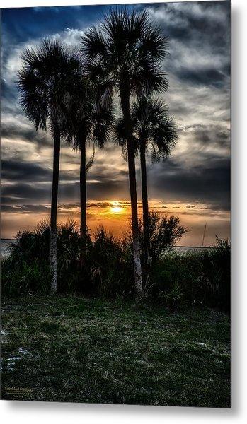 Palms At Sunet Metal Print