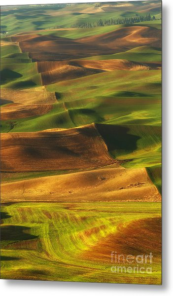 Palouse Morning Metal Print