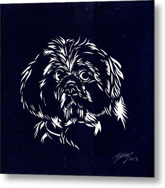 Pampered Dog Metal Print by Alfred Ng