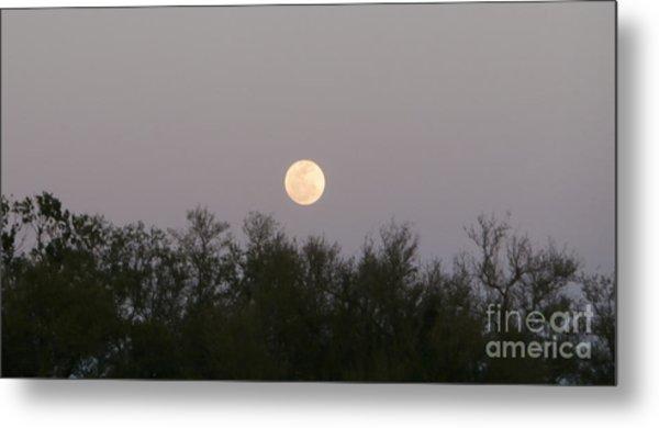 Panoramic New Orleans Moon Rising Metal Print