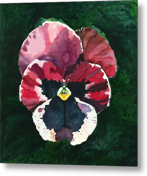 Pansy Red Metal Print