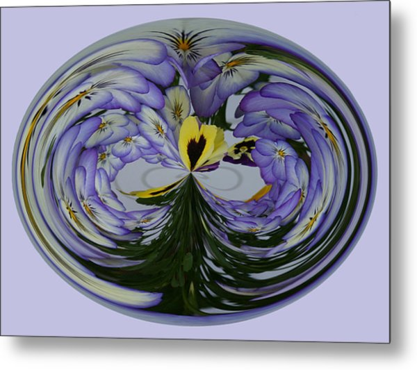 Metal Print featuring the photograph Pansy Series 507 by Jim Baker