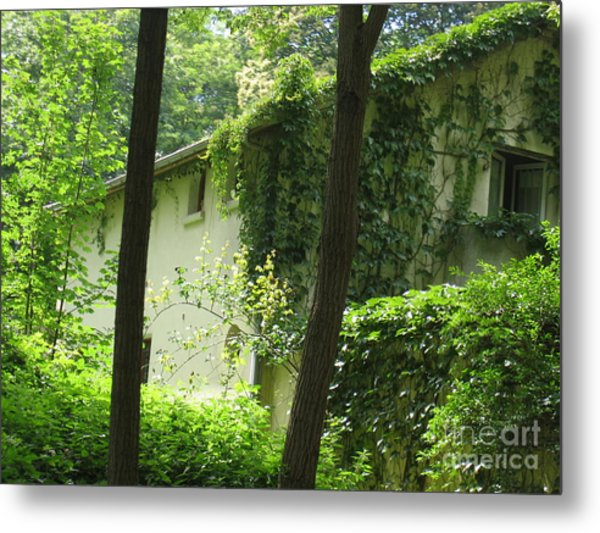 Paris - Green House Metal Print