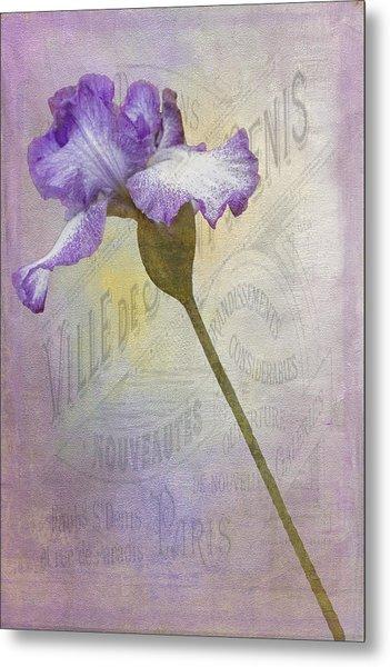 Parisian Purple Metal Print by Chanin Green