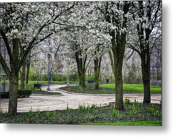 Park Blossoms Metal Print