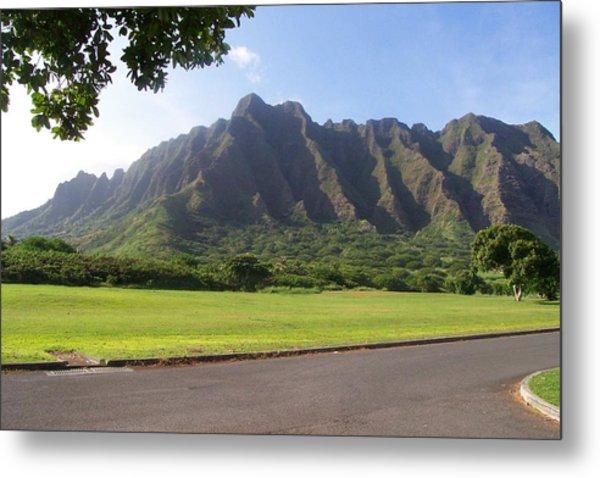 Park On Oahu Metal Print