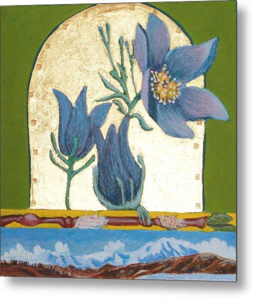 Pasque Flower In The Spring Metal Print by Amy Reisland-Speer