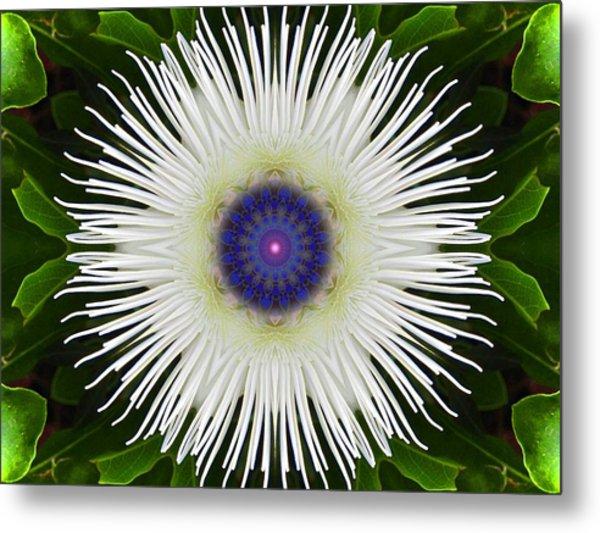 Passion Flower Portal Mandala Metal Print