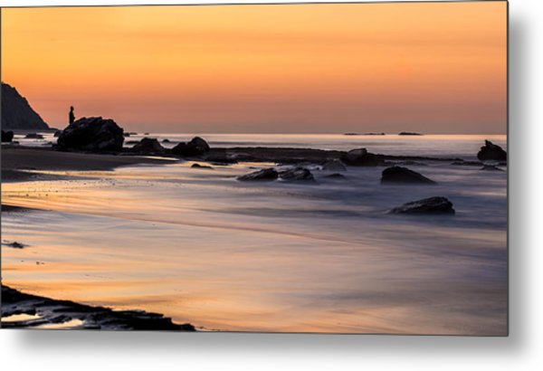 Past Meets Present By Denise Dube Metal Print