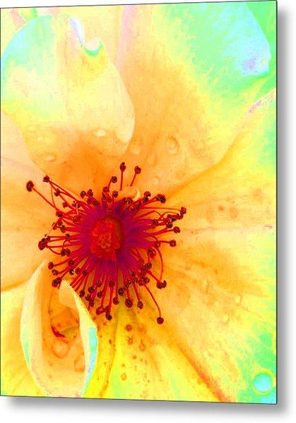 Pastel Garden Metal Print