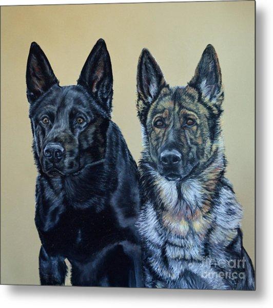 Pastel Portrait Of Two German Shepherds Metal Print by Ann Marie Chaffin