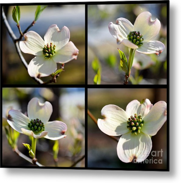Patched Together Dogwoods Metal Print