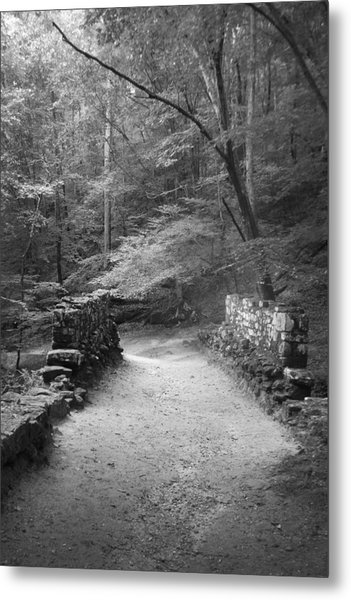 Path In Black And White Metal Print