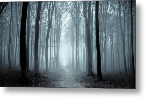 Path Through A Misty Forest During A Foggy Winter Day Metal Print by Sjo