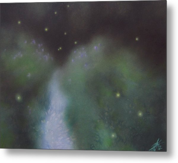 Path To Asters And Fireflies Metal Print