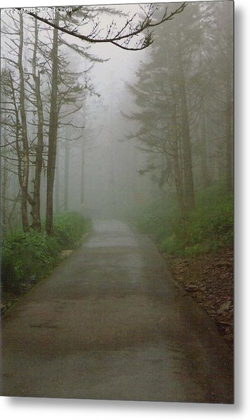 Path To Clingmans Dome Metal Print