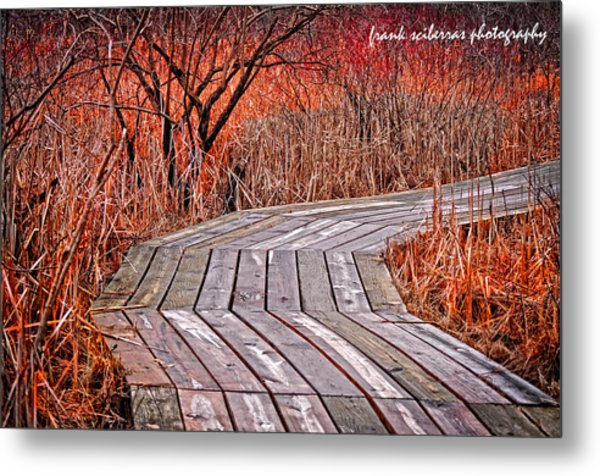 Path To Nature Metal Print by Frank Sciberras