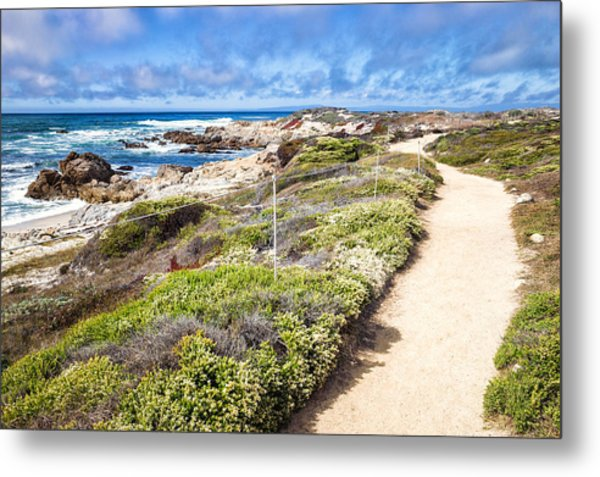 Metal Print featuring the photograph Pathway At Asilomar State Beach by Priya Ghose