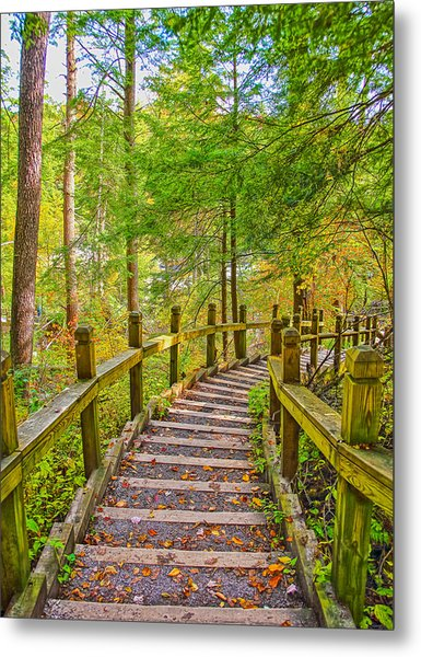 Pathway To The Falls  Metal Print by SCB Captures