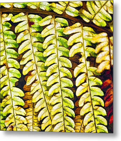 Patterns In Cinnamon Fern Metal Print