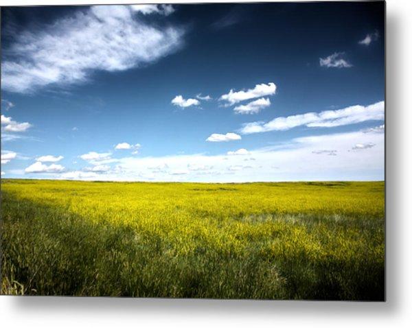 Pawnee Grasslands Metal Print