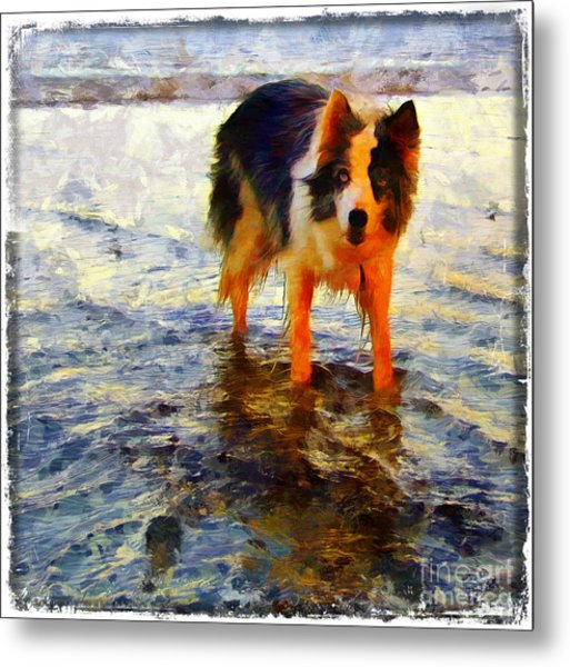 Paws For Thought Metal Print