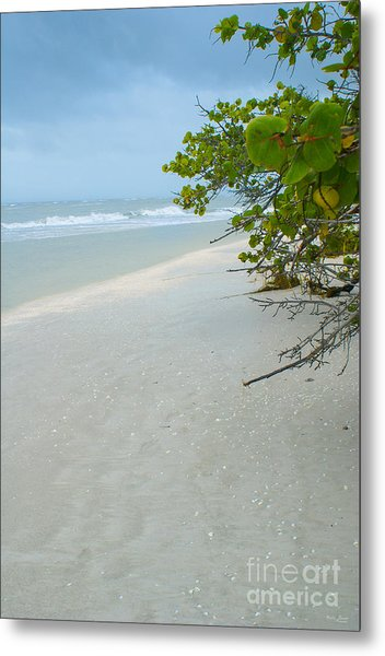 Peace And Quiet On Sanibel Island Metal Print