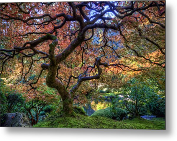 Peaceful Autumn Morning Metal Print