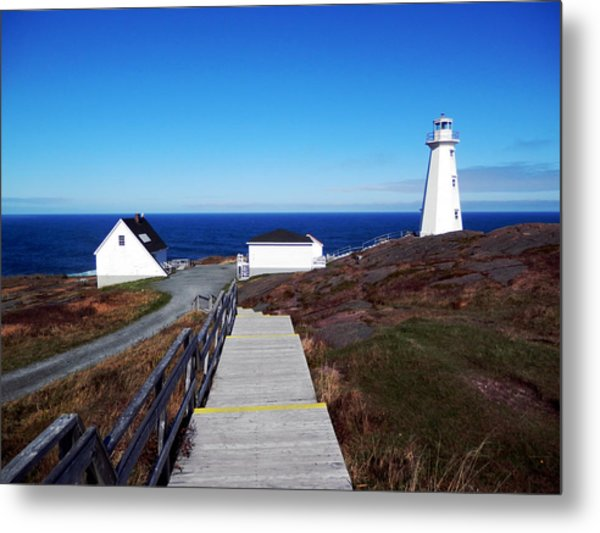 Peaceful Day At Cape Spear Metal Print