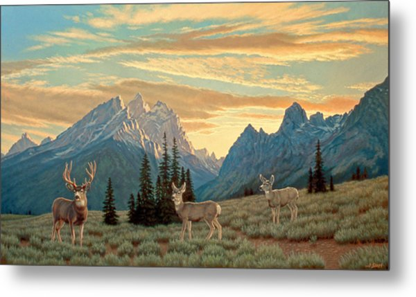 Peaceful Evening - Tetons Metal Print
