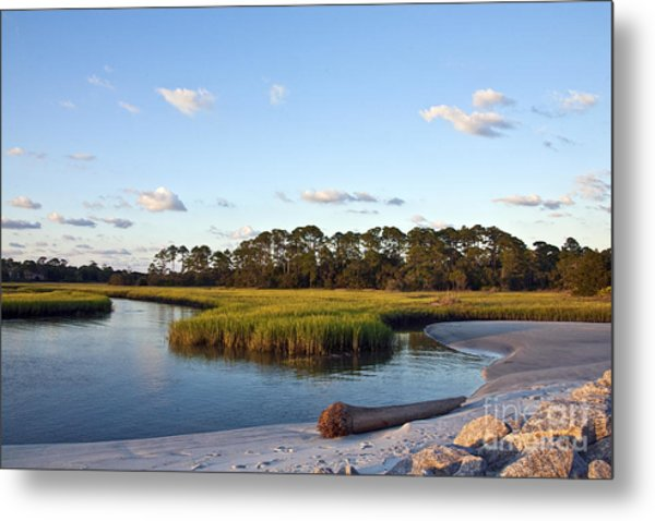 Peaceful Marsh Metal Print
