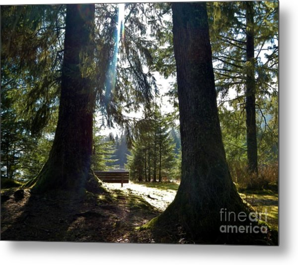 Metal Print featuring the photograph Peaceful Setting  by Laura  Wong-Rose