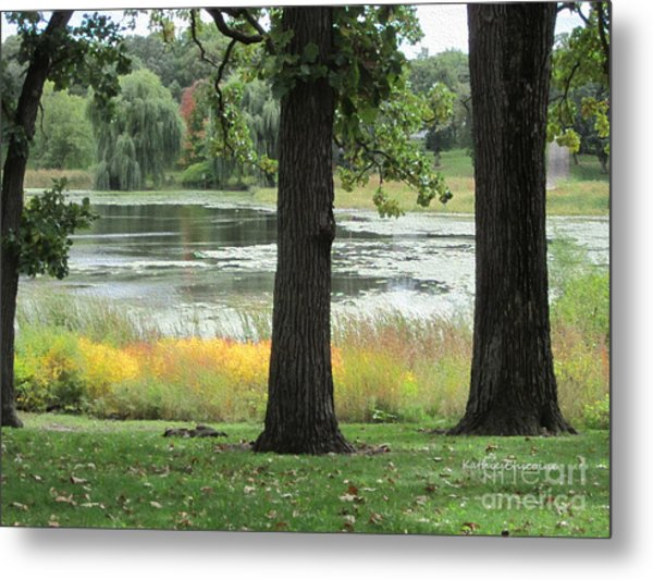 Peaceful Water Metal Print