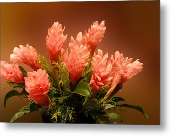 Peach Gibger Blossoms Metal Print