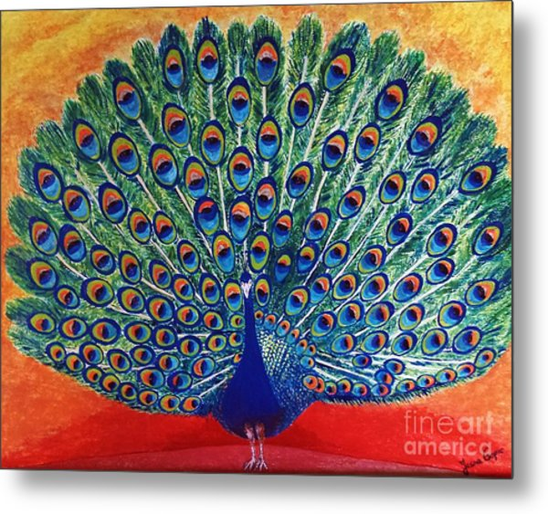 Peacock By Jasna Gopic Metal Print