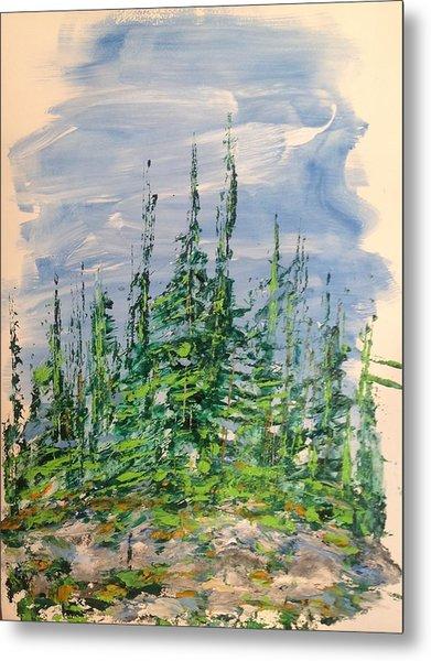 Peak Of Pines Metal Print