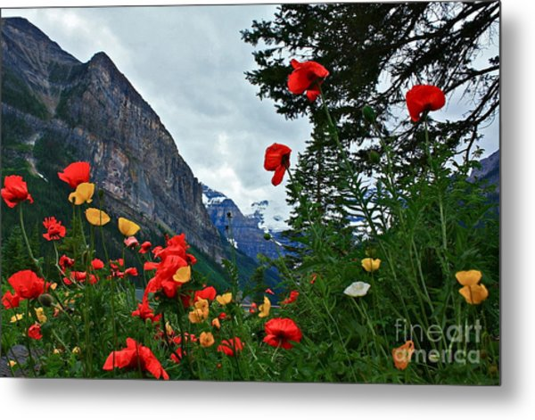 Peaks And Poppies Metal Print