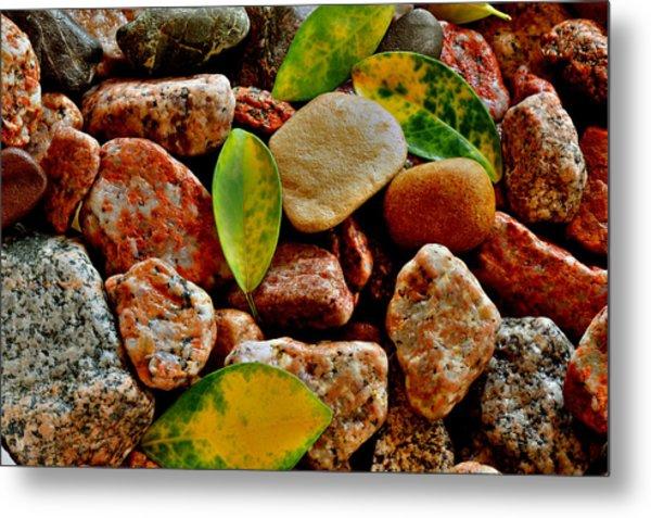 Pebbles And Leaves Metal Print