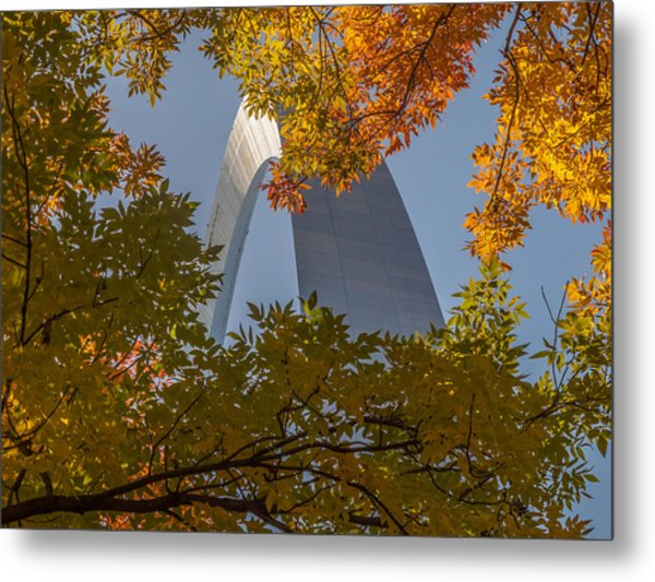 Metal Print featuring the photograph Peekaboo by David Coblitz