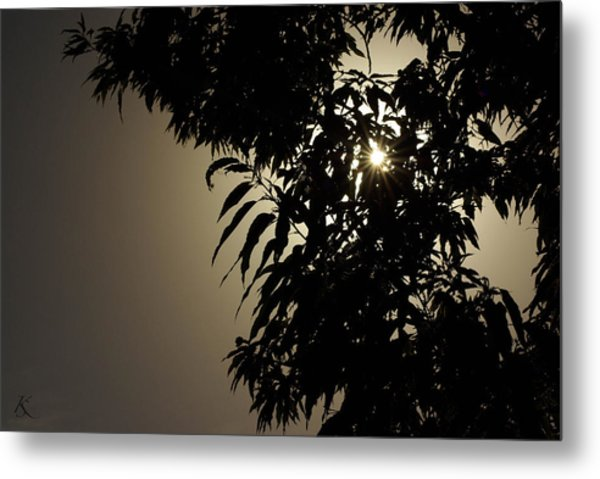 Peeking Sun Metal Print