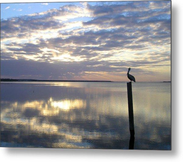 Pelican At Sunset Metal Print