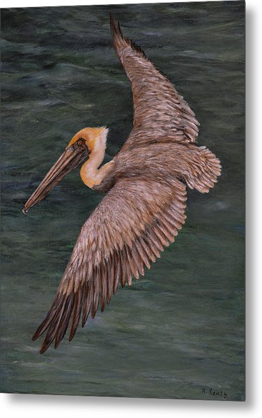 Pelican Fishing Metal Print