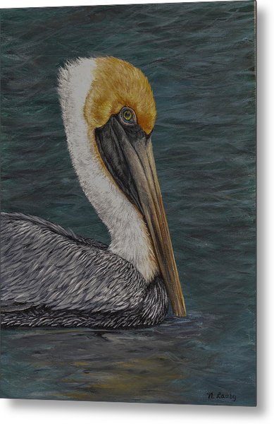 Pelican Floating In The Bay Metal Print