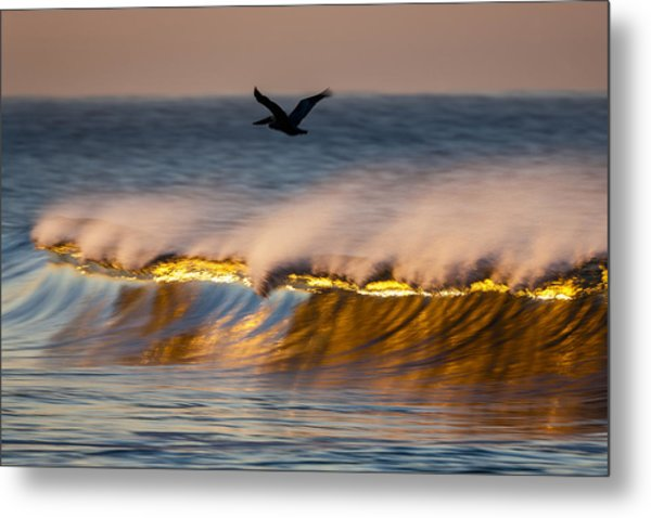 Pelican Over Wave  C6j9351 Metal Print