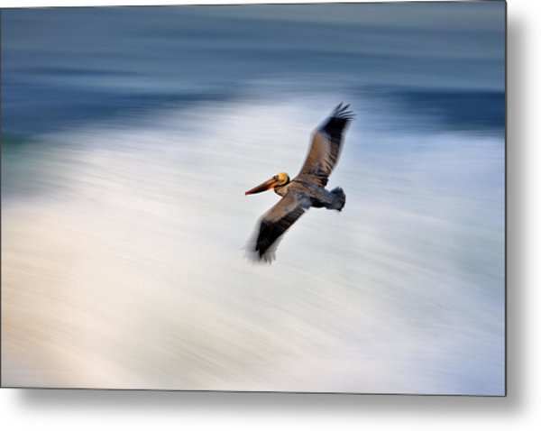 Pelican Over Wave  Mg_1212 Metal Print