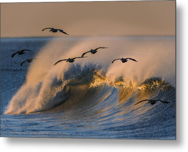 Pelicans And Wave 73a2308-2 Metal Print