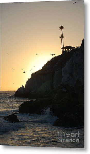Pelicans Gliding At Sunset Metal Print
