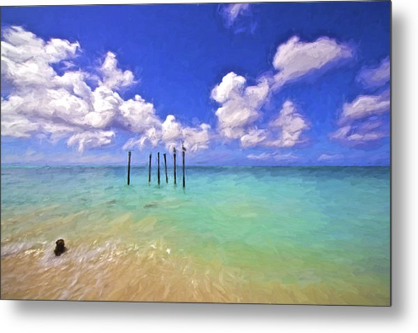Pelicans Of Aruba Metal Print